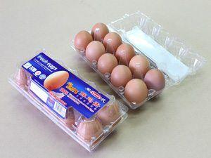 Chews Eggs